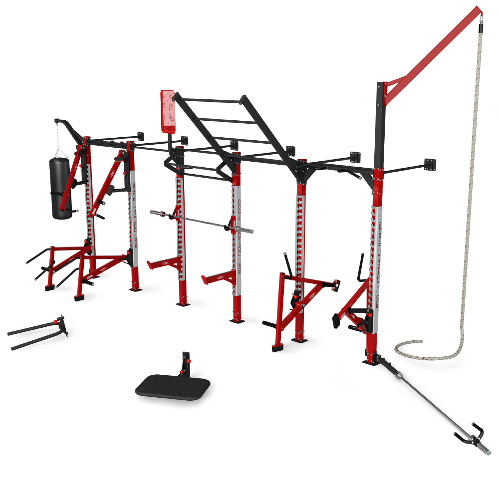 Wall mounted functional training cage