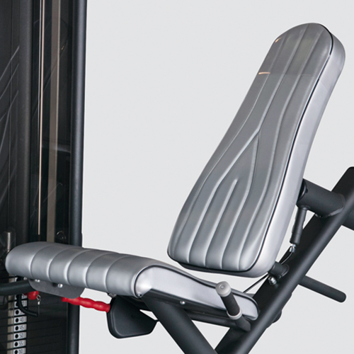 Seat and Back Support